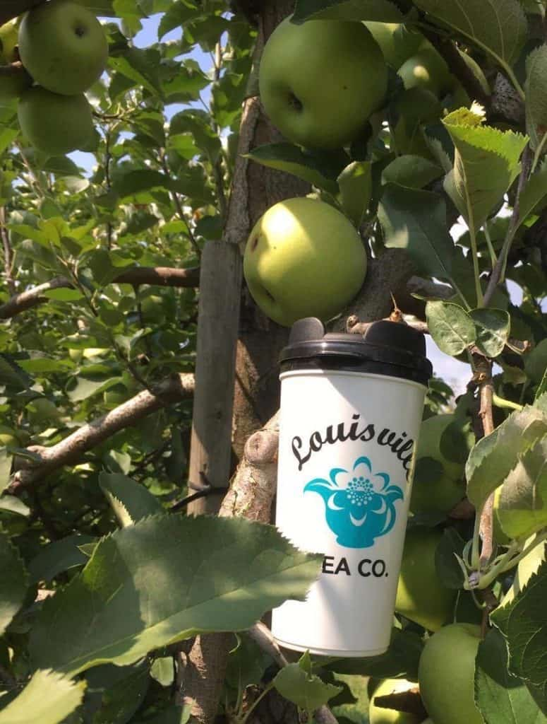 Louisville Tea Co apple picking hubers