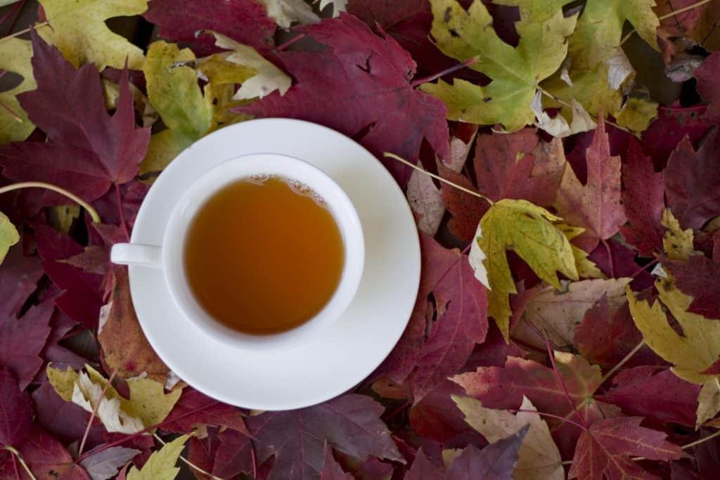 fall leaves tea
